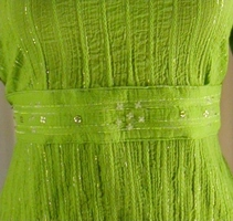 Green Beaded Waist Band image